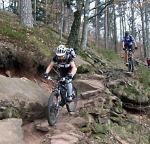 single trails pfalz One of the easier trails with more parts with dirt, rocks, some loose stones, and intermediate trail biking, maikammer, rheinland-pfalz, germany, 20022017,.